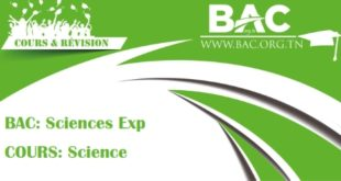 bac-sciences-exp-cours-science-jpg